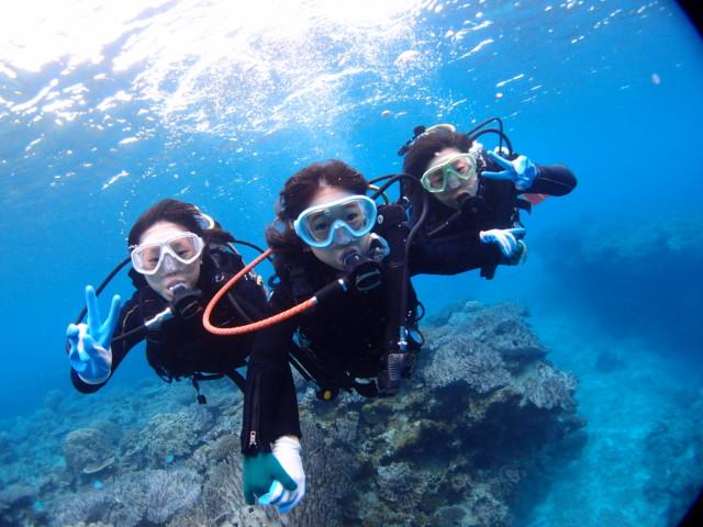 沖縄本島、ゴリラチョップでダイビングとシュノーケル 2018年12月27日のお客様