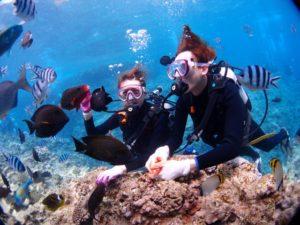 沖縄 青の洞窟 ダイビング