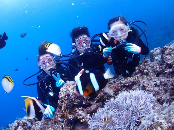 沖縄 ちびっこお魚ダイビングプラン追加
