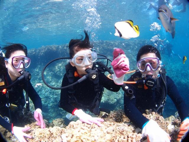 沖縄 夏休み ビーチ マーメイド体験 青の洞窟体験ダイビング&シュノーケル