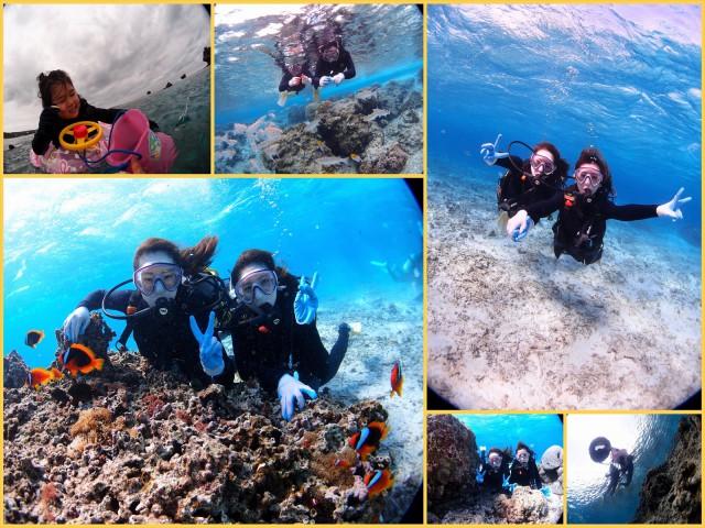 沖縄 珊瑚の海で遊ぶ体験ダイビング&家族で行くお魚シュノーケル 2018年1月25日のお客様