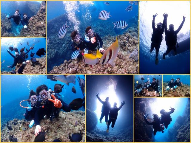 冬の沖縄で貸切ツアー 青の洞窟体験ダイビング 2018年1月4日のお客様