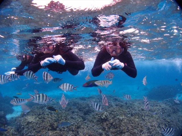 冬休みの沖縄でダイビング&シュノーケルツアー 2018年1月5日のお客様