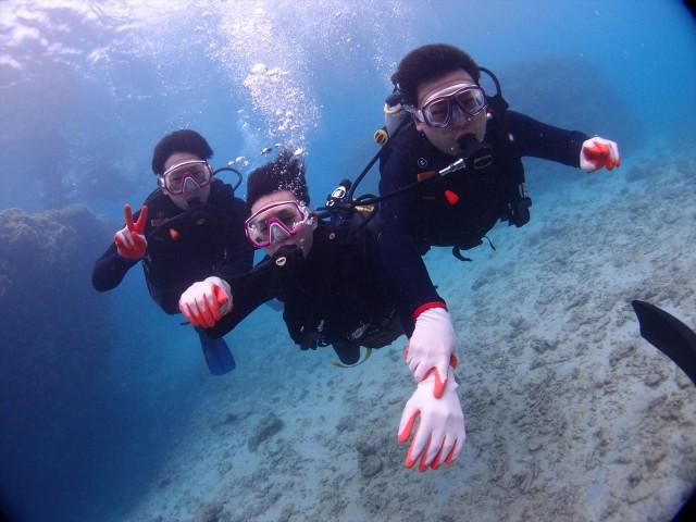 沖縄 学割 体験ダイビング