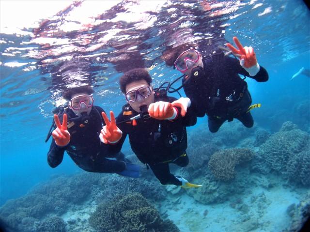 沖縄 珊瑚 ダイビング