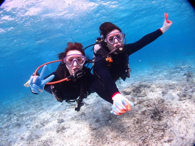 沖縄 貸切開催 沖縄 クマノミ体験ダイビング 2018年1月23日のお客様