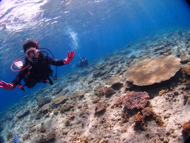 沖縄ダイビング旅行