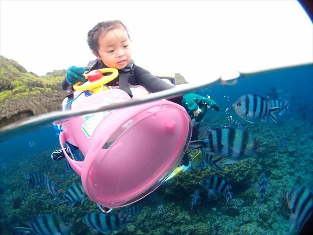 沖縄シュノーケル 家族