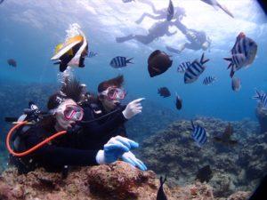 沖縄で初ダイビング