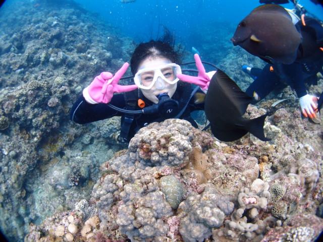 沖縄ツアー 海遊び人気  2019年6月25日