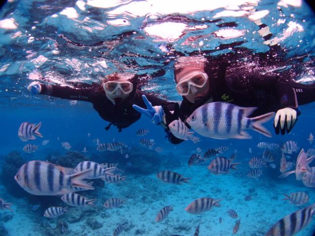沖縄 サンゴが綺麗な海でダイビングとシュノーケリングツアー 2019年12月5日のお客様