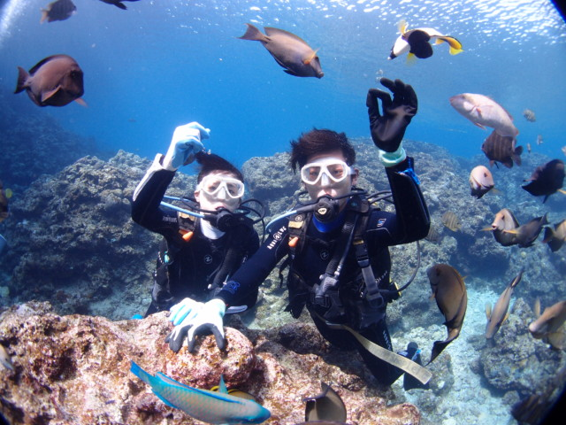 ダイビングで素敵な海の景色を皆様に!! 2020年2月14日のお客様