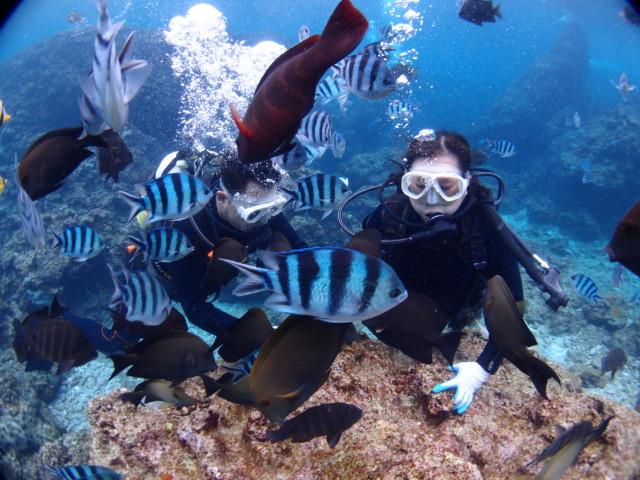 沖縄の海で憧れの人魚に大変身! 2020年4月3日のお客様